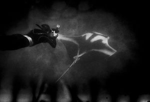 Manta ray swimming with a diver